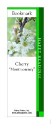 This bookmark depicts a Montmorency Cherry blossom.