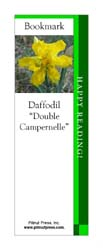This bookmark depicts a Double Campernelle Daffodil.