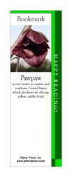 This bookmark depicts a Pawpaw Blossom.