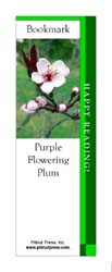 This bookmark depicts a Purple Flowering Plum.
