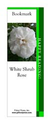 This bookmark depicts a White Shrub Rose.