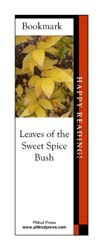 This bookmark depicts leaves of the Sweet Spice Bush in fall.